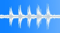 Gladiator treefrog (Hypsiboas rosenbergi) - sound effect