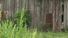 Texas country rural scene Stock Footage