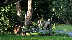 Gardener cleaning leaves in park Stock Footage