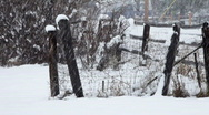 Fence view of blizzard Stock Footage