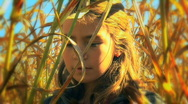 Girl looking at cornstalks on beautiful autumn day Stock Footage