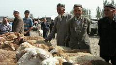 Kashgar animal market sheep trading Stock Footage