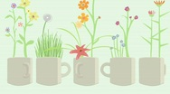 Stock Video Footage of Mugs w Flower Explosion 1920x1080