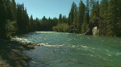 River and Forest - stock footage