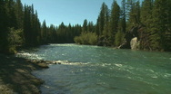 Stock Video Footage of River and Forest