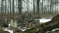 Auschwitz Birkenau Gas chamber 3 ruins Stock Footage