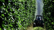 Germany Bavaria Hops farmer spraying pesticide Stock Footage