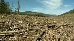 Logging Clear Cut Stock Footage