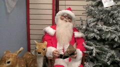 Santa and Reindeer Stock Footage