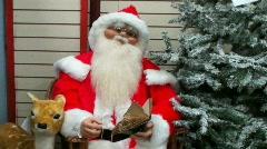 Santa and Reindeer 2 Stock Footage