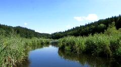 Biotop nature protection area Naturschutzgebiet Stock Footage