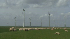 WS OF WIND TURBINES AND SHEEP - stock footage