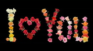 "Stock Video Footage of Montage ""I love You"" roses time-lapse with alpha matte 1"