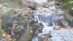 Autumn Waterfall 2 Stock Footage