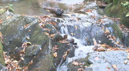 Stock Video Footage of Autumn Waterfall 2