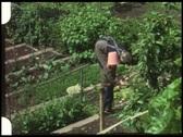 Grandma in kitchen garden (vintage 8 mm amateur film) Stock Footage