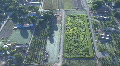 Hedge Maze View From Above HD Footage