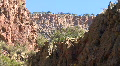 A Canyon In The Jemez Mountains HD Footage