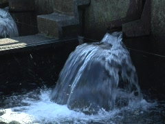 Salmon Hatchery water spouts Stock Footage