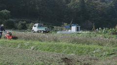 Japanese farmer harvesting rice Stock Footage