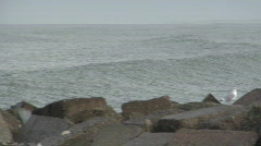 Wave-Seagul-Denmark Stock Footage