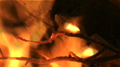 Forest fire closeup Stock Footage