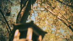 Pan around the birdhouse Stock Footage