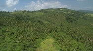 Aerial over a Mountain Range covered in Rain Forest Stock Footage