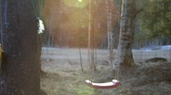 Stock Video Footage of Early spring in Sweden: Gnats are dancing in a sunray in a garden.