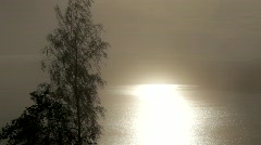 A birch sways in a breeze, the sea glitters on a hazy day Stock Footage