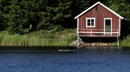 Stock Video Footage of A familiy of Canada geese swims in front of a boathouse.
