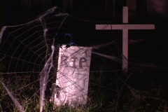 A backyard transforms into a spooky graveyard for Halloween. Stock Footage