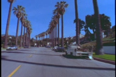 Palm trees line a street in Beverly Hills. Stock Footage