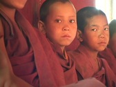 Buddhist boys sit in a row. Stock Footage