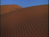 Sand dunes stretch into the distance. Stock Footage