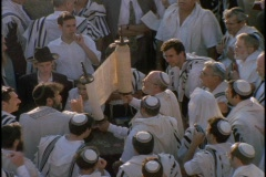 Orthodox Jews at a festival hold up Torah. Stock Footage