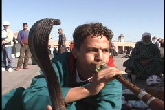 A snake charmer works on the streets of Marrakesh, Morocco Stock Footage