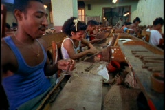 Men and women work together in a cigar factory in Havana, Cuba. Stock Footage