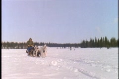 A team of dogs pulls a sled and rider across a snowy landscape. Stock Footage