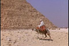 A man rides a camel next to a pyramid. Stock Footage