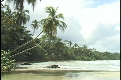 Waves wash gently onto a secluded tropical beach. Stock Footage
