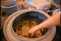 Natives in Indonesia remove snakes from a large pot in an open market. Stock Footage
