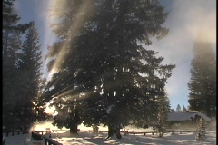 Sun rays shine above a winter snow scene. Stock Footage