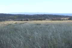 A pleasant view over a region of brush with a town in the background. Stock Footage