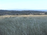 Stock Video Footage of A pleasant view over a region of brush with a town in the background.