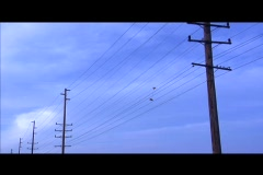 Shoes are thrown over a telephone line. Stock Footage