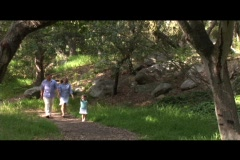 Medium shot of a family walking through a forest. Stock Footage