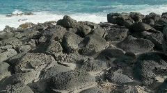 Pan across a rocky volcanic shoreline on a tropical island. Stock Footage