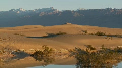 A pan across desert dunes at an oasis. Stock Footage