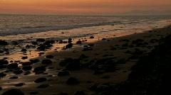 Birds graze along the shore at dusk. Stock Footage